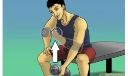 Làm thế nào để xây dựng cơ bắp khi tập Gym
