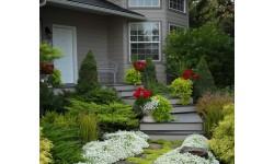 Tăng thêm đẳng cấp sang trọng cho ngôi nhà với những ý tưởng thiết kế sân vườn đẹp