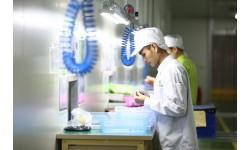 7 công việc người lao động không được đến làm việc ở nước ngoài là gì?